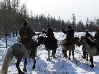 Où est le loup ? - chasse près du lac de Khögöl, Mongolie
