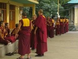 Moines s'entraînant au débat à MacLeod Ganj (Dharamsala)